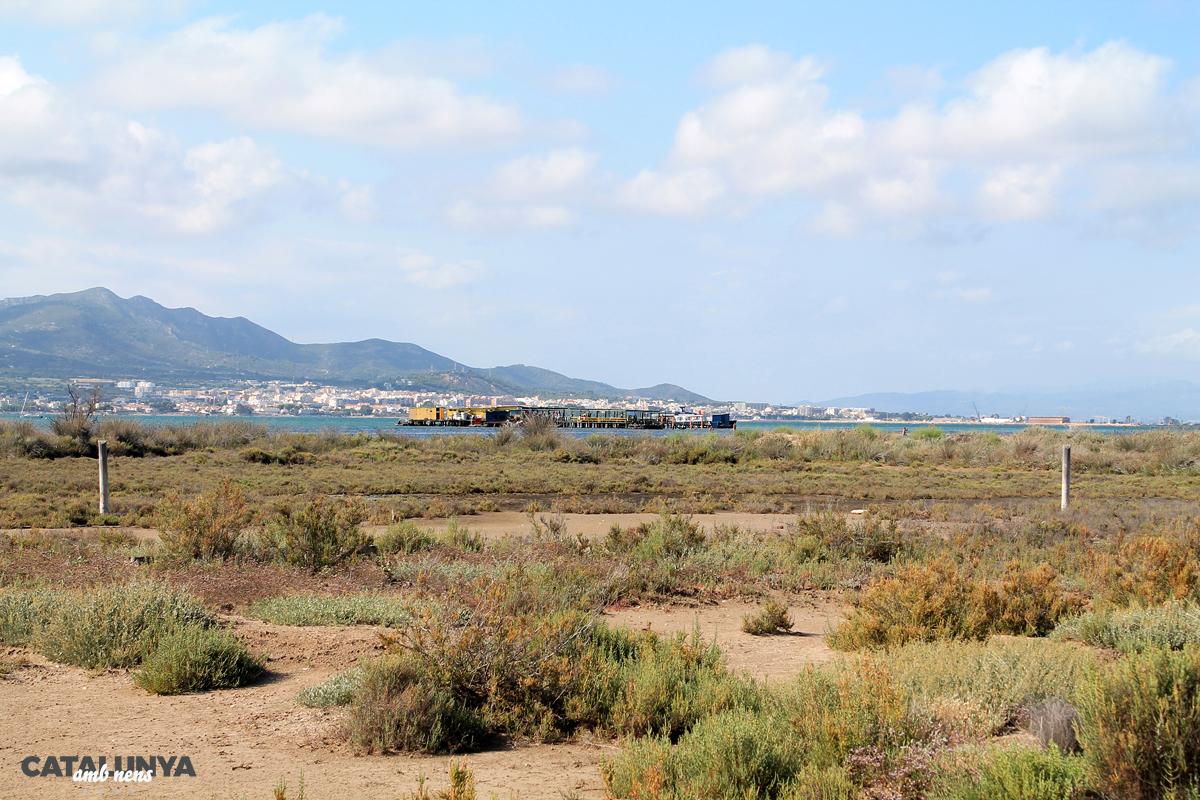 El Xiringuito de la Costa amb el Montsià al darrera